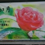 2月如月(きさらぎ)節分祭