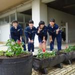 緑化委員が花を植えてくれました